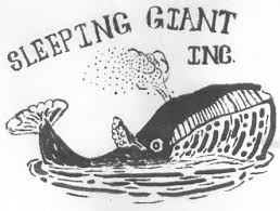Customer Spotlight: Sleeping Giant